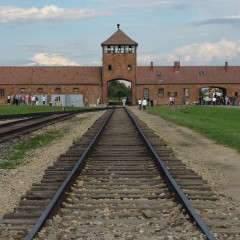 Lycéens de retour d'Auschwitz