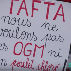 Traité Tafta : attention, danger !