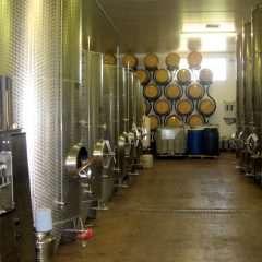 La croissance de l'industrie mondiale du vin s'appuie aussi sur des collaborations scientifiques