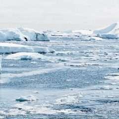 L'urgence à s'adapter redessine la lutte contre le changement climatique