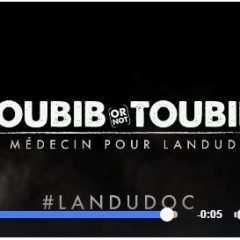Toubib ou not toubib pour Landudec (Finistère)