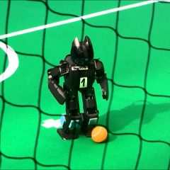 La France championne du monde de foot (de robots)
