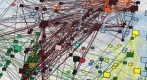 Organisation cérébrale d'un cerveau de primate au repos d'après la théorie des graphes. Carole Guedj,