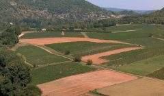 Le vignoble de Cahors (France)