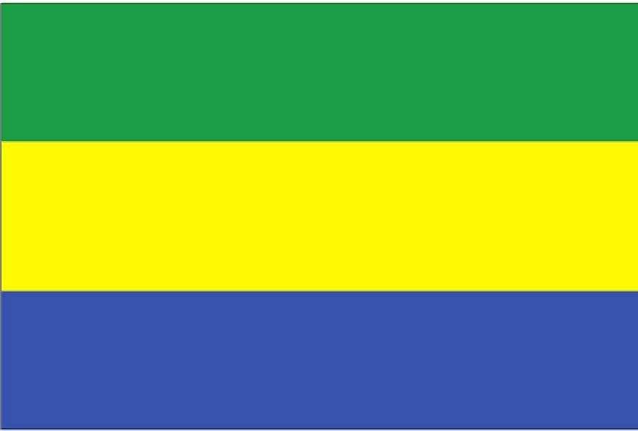 Le Gabon, un pays en danger de mort