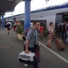 Transports : 15 COREST pour en parler