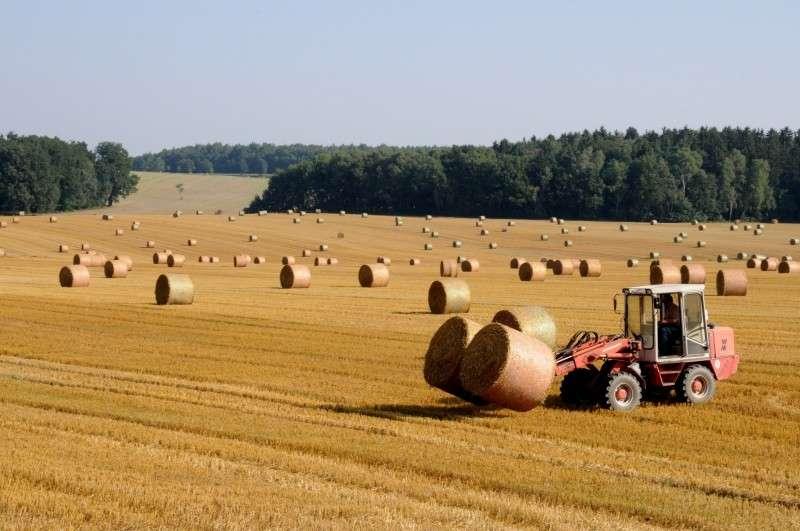 Grand Est : un plan d'urgence de 5 M€ pour l'agriculture