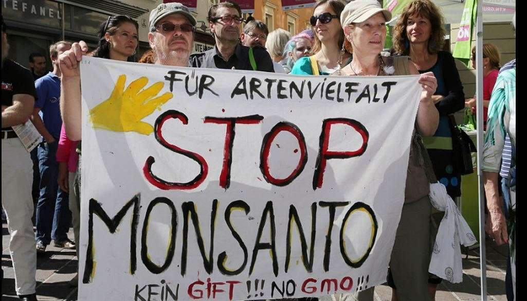 Tribunal Monsanto : la société civile se saisit des crimes contre la nature