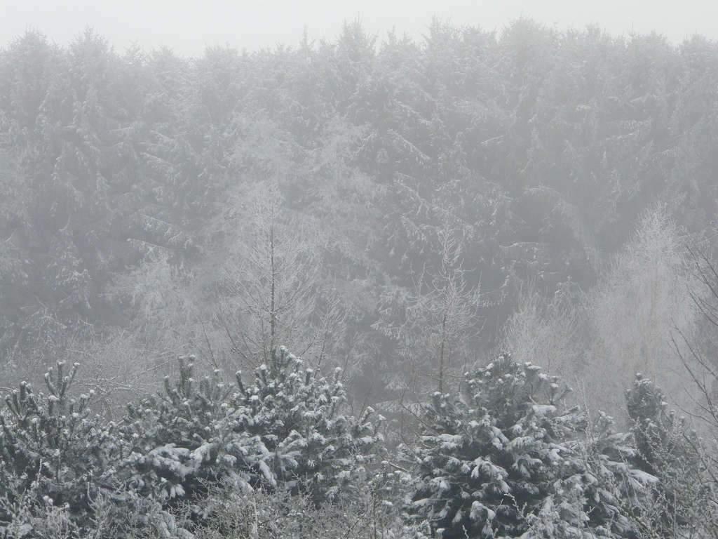 il-fait-froid-dans-toute-la-region