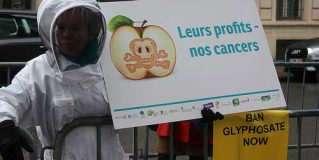 Perturbateurs endocriniens : que peut l'initiative citoyenne « Ban glyphosate » ?