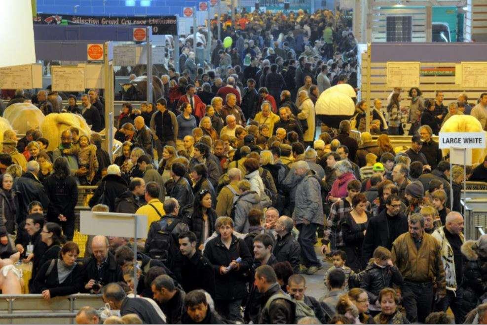 Modèles économiques de l'agriculture française : les gagnants et les perdants
