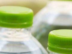 Du vert pour la tendance écolo