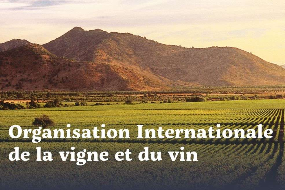 Organisation internationale de la vigne et du vin