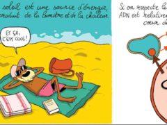 Hugo Gattuso, Quand l'ADN fait BOUM !. Peb&Fox-Université de Lorraine