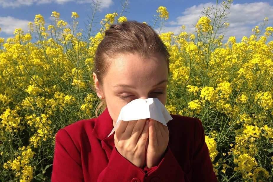 Comment l'environnement fabrique des allergiques avant même leur naissance