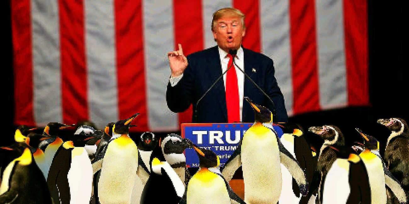 Sortie de l'Accord de Paris : Trump ou la politique du coup d'éclat