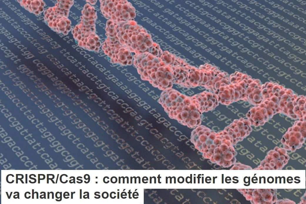 CRISPR/Cas9: comment modifier lesgénomes vachangerlasociété