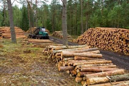 La Région signe le 1er contrat de la filière forêt-bois de France