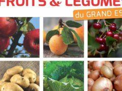 Fruits et légumes : une filière à aider