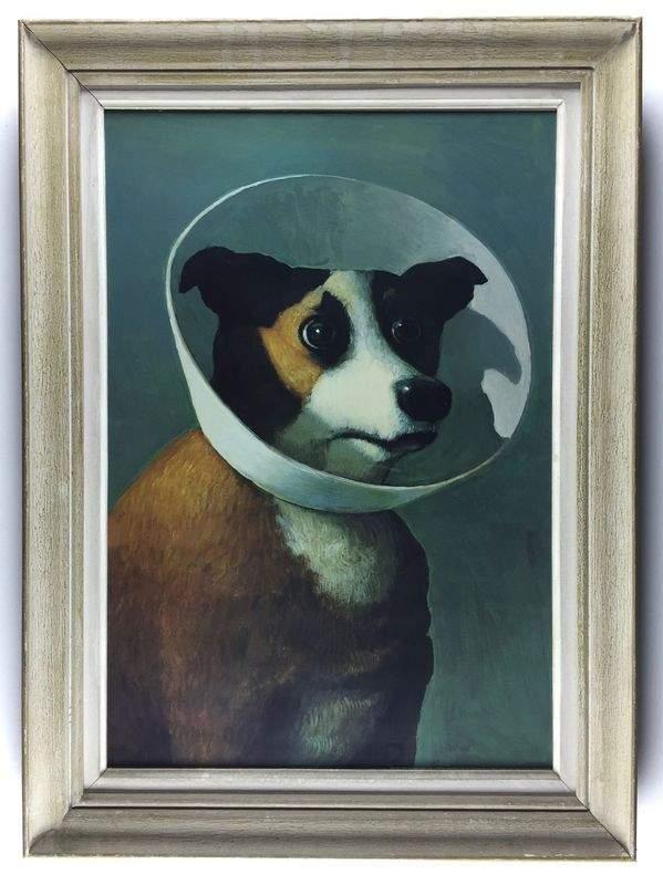"""Le chien de cinéma (""""Amélie"""")."""