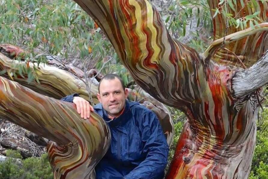 Dans l'intimité des arbres: au jardin botanique de Nancy