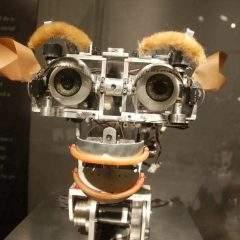 Que doit-on craindre davantage: l'intelligence artificielle oulabêtisehumaine?