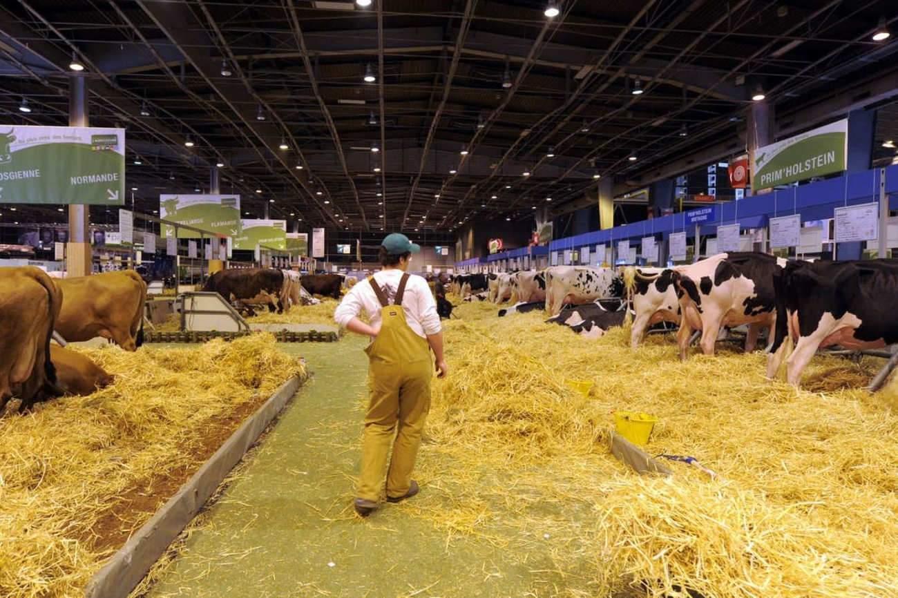 La plus grande ferme du monde à Paris du 27 février au 4 mars 2018 (DR)
