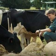 »Petit paysan» sacré meilleur premier film aux César