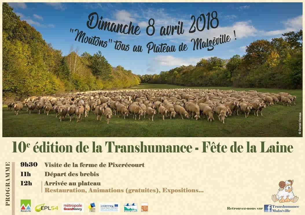Transhumance le 8 avril à Malzéville