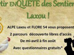 En quête des sentiers de Laxou (Flore 54)