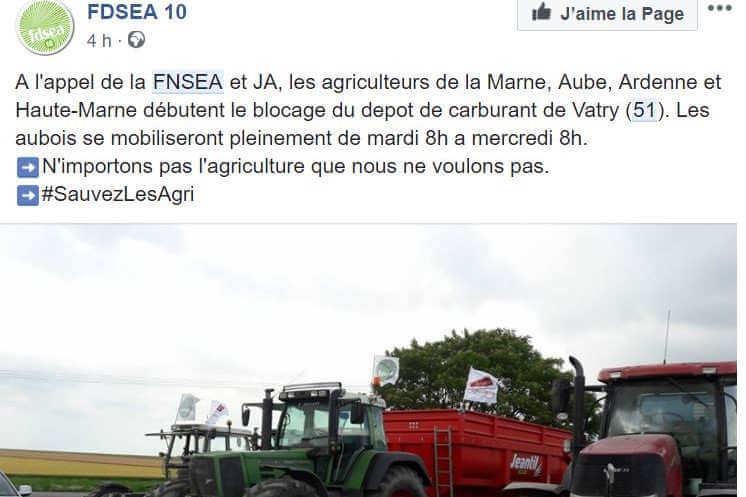 Huile de palme : la colère des agriculteurs