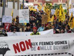 En novembre 2017, manifestation de la Confédération paysanne contre le projet de ferme aux 4 000 vaches. La nouvelle PAC devrait renforcer le phénomène des méga-fermes. Philippe Desmazes/AFP, CC BY-NC-ND