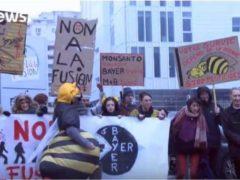 Manifestation contre la fusion Bayer – Monsanto à Lyon le 3 mars 2018 (Capture Euronews)