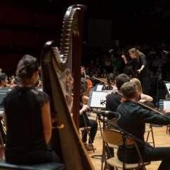 Ces orchestres qui donnent du souffle aux universités