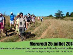 Balade verte et bleue avec l'association Flore 54 (photo Flore 54)