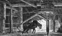 Cheval faisant tourner le « baritel » qui permet de faire monter et descendre les ouvriers dans la mine. Image extraite « La vie souterraine ou les mines et les mineurs » (1867), de Louis Simonin