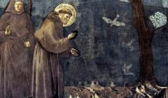 Fresque de Giotto, fin XIIIe siècle, dans la basilique Saint-François d'Assise, qui représente ce dernier en train de prêcher auprès des oiseaux. (détail) Wikipédia