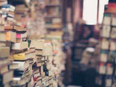 Les conseils lecture des chercheurs vous accompagnent cet été. Pixabay