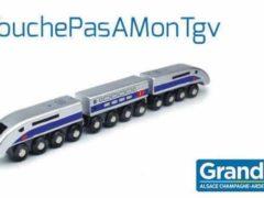 Pétition sur change.org pour le maintien du TGV et de toutes ses dessertes (capture change.org)