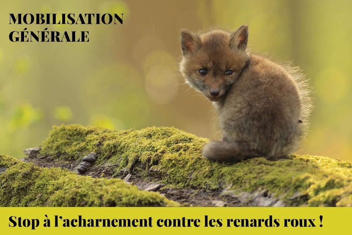 «Le préfet de Meurthe-et-Moselle cède au lobby des chasseurs»