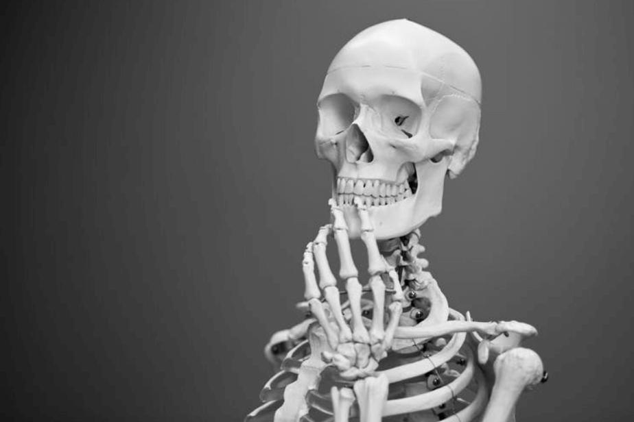 Police scientifique : un portrait-robot à l'ADN