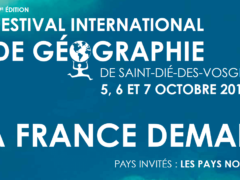29ème édition du FIG (affiche)