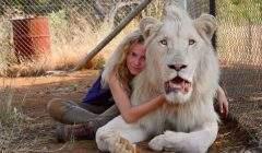 « Pour travailler avec des lions, il y a deux principes qui sont l'amour et la confiance », estime la jeune Daniah de Villiers.