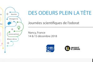 Journées scientifiques à Nancy (annonce U.L.)