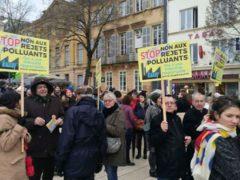 Stop Knauf Illange, marche pour le climat à Metz (photo Stop Knauf Illange)