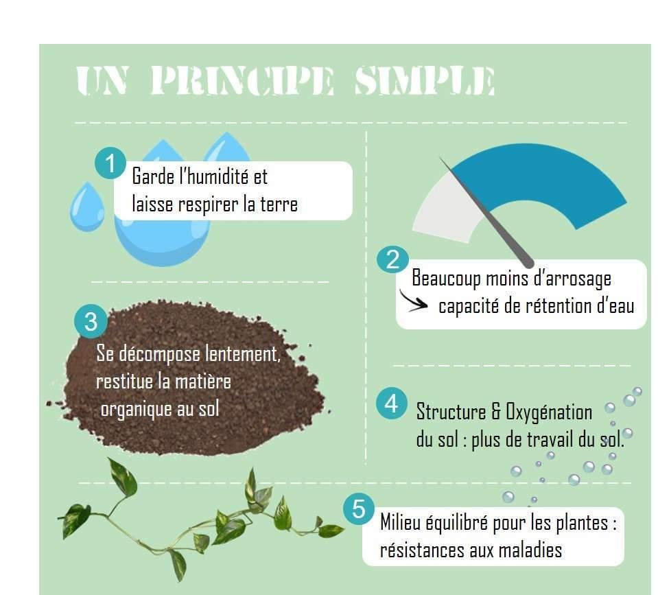 Un principe simple de valorisation des broussailles (schéma Buxor)