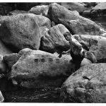 fermer Peinture à l'eau sur les pierres, 1998, Vallée Hakone © Atelier Lee Ufan