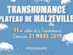 Transhumance (affiche)