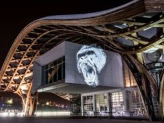 """""""Par le caractère éphémère de mes fresques lumineuses, je souhaite sensibiliser le public au fait que la présence de ces animaux, dans ces espaces naturels, est réellement menacée."""" Julien Nonnon, digital street artist."""