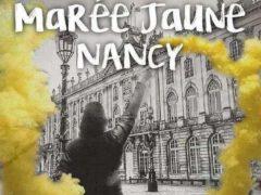 Les GJ de Lorraine à Nancy le 13 avril 2019 (Facebook)